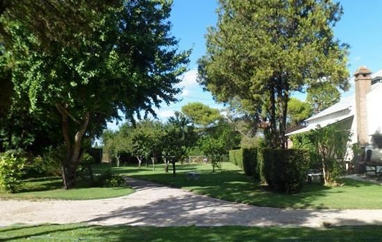 Colegio Lincoln_La Plata_5