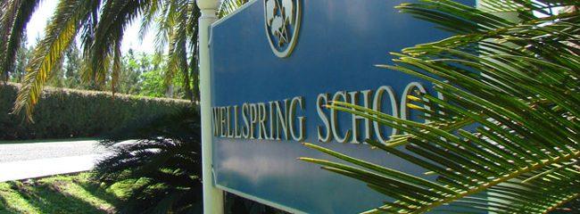 Colegio Wellspring School 1