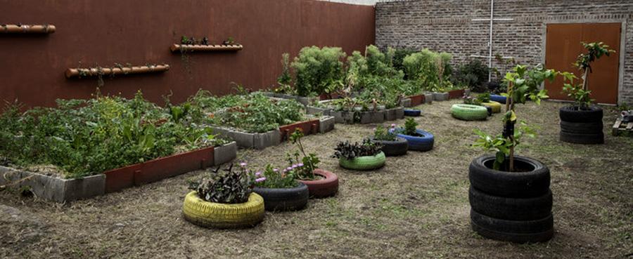 escuelas que promueven cuidado ambiental
