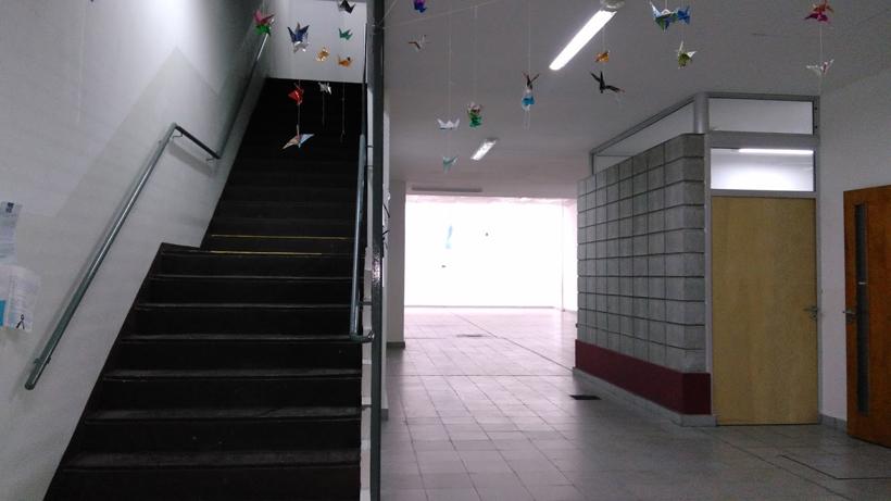 Colegio Baldomero Fernandez Moreno-entrada 2