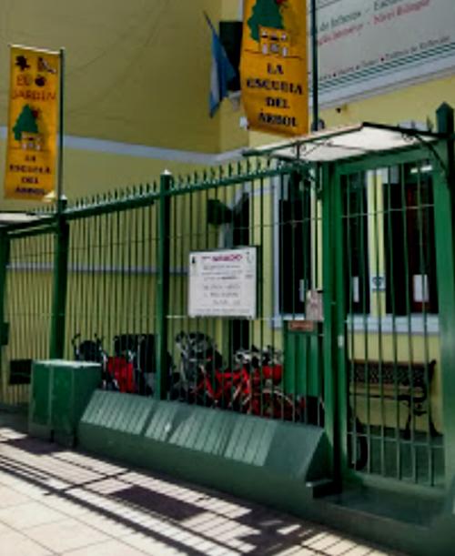Escuela Del Árbol 1