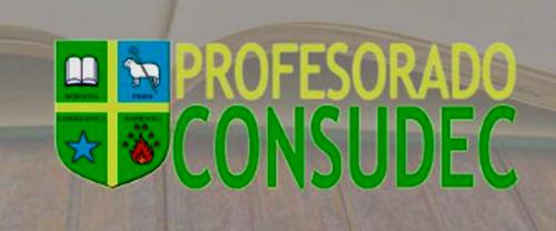 Profesorado CONSUDEC 4