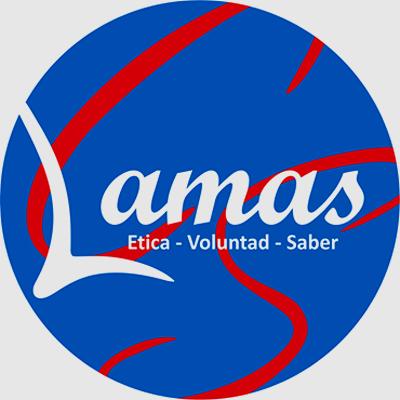 Colegio Carlos Saavedra Lamas 3