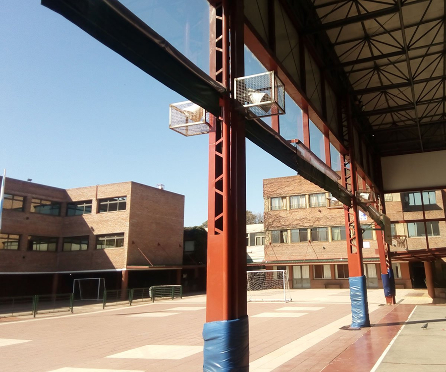 Colegio Los Molinos (Munro) 4