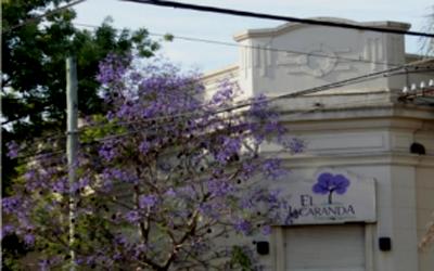Institución educativa El Jacarandá 2